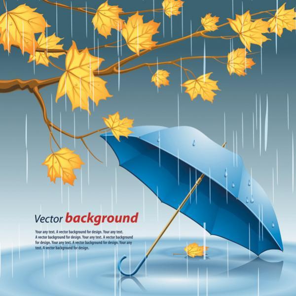 แบ็คกราวร่มและฝน