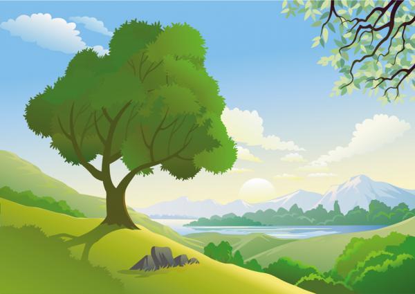 วิว ป่าไม้ ต้นไม้ ภาพเวกเตอร์ รูปกราฟฟิกลายเส้น ดาวน์โหลด