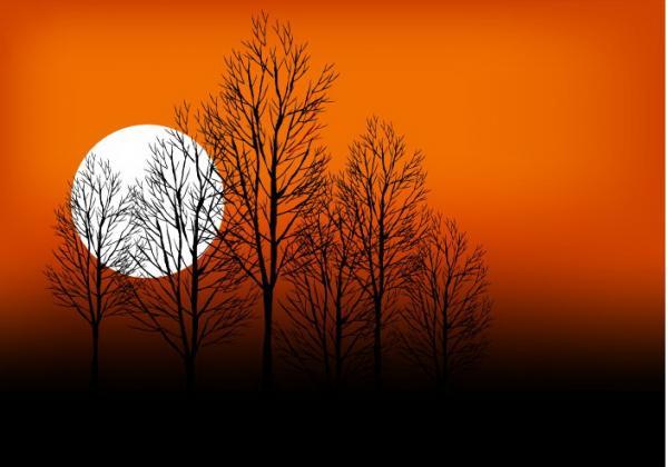 ท้องฟ้าพระจันทร์เต็มดวง