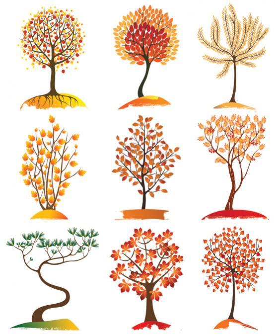 ไอคอนต้นไม้