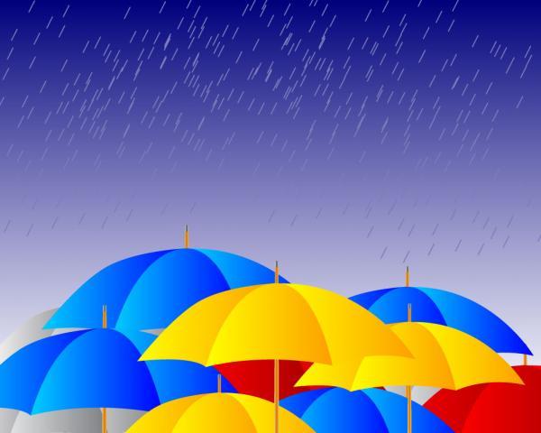 ร่มฝนตก