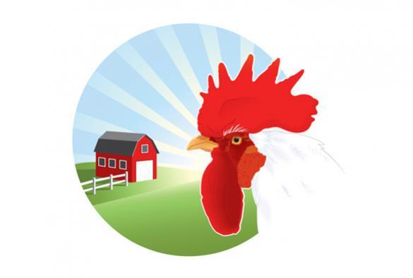 โลโก้ฟาร์มไก่