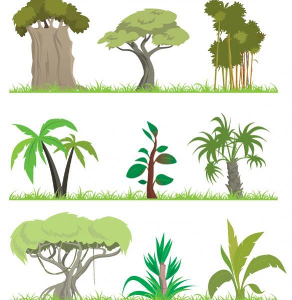 Jungletreesgrasses