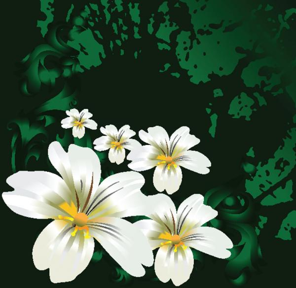 ดอกไม้กราฟิก